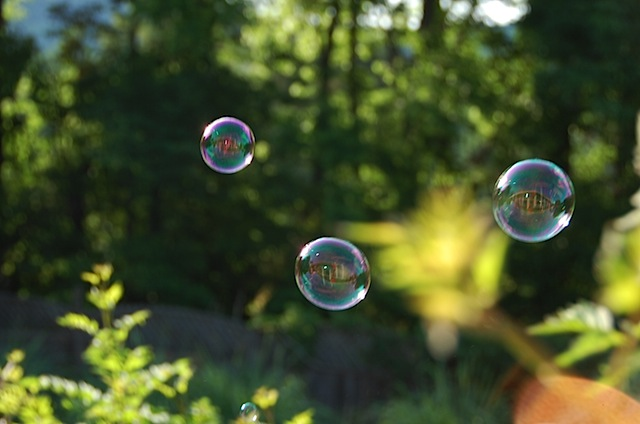 bubbles e