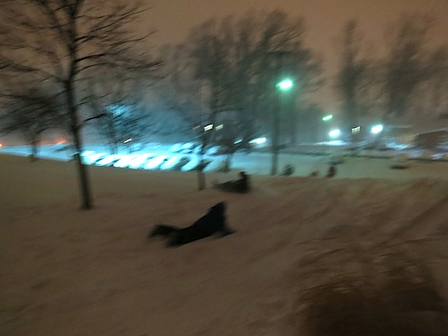students sledding 4